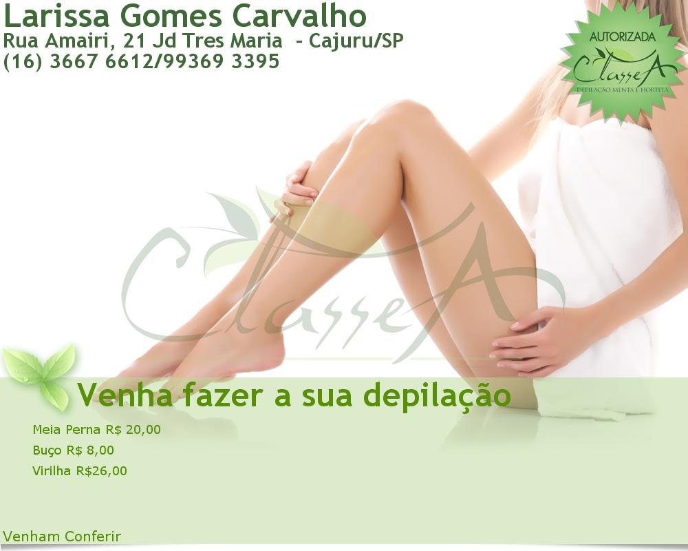 Larissa Gomes Carvalho